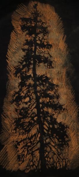 Ксения Баранова. Зарисовка, 2011г, бумага, сангина, мел, 20х40